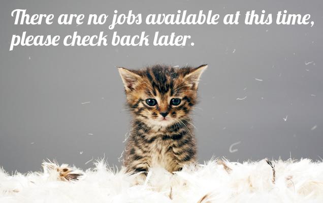 careers_cat